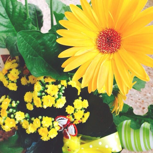 💐🌻🌼#april #flowers