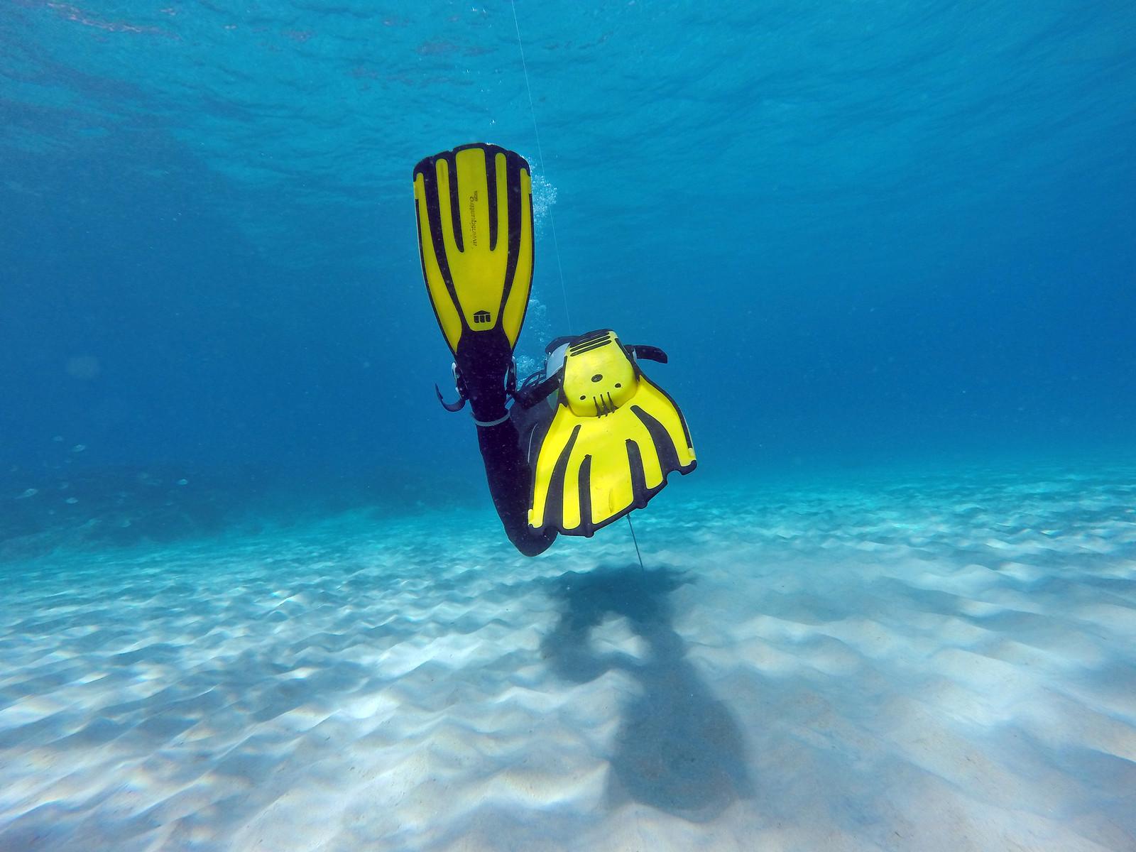 scuba diving on tioman salang