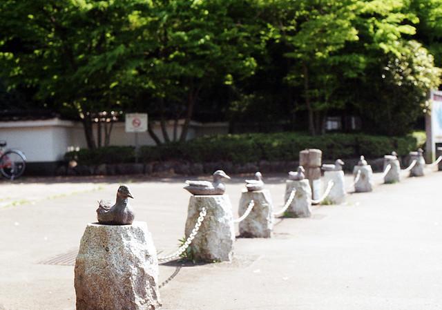 Yatoyama Park