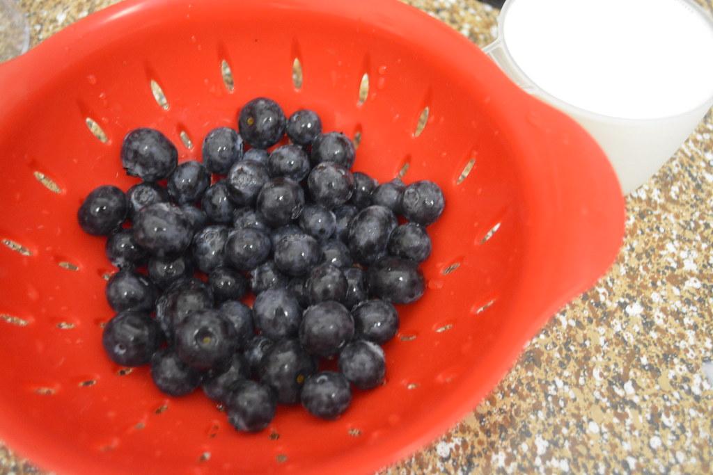 Blueberry Milkshake Recipe
