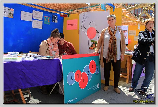 Feria de Asociaciones en Briviesca (3)