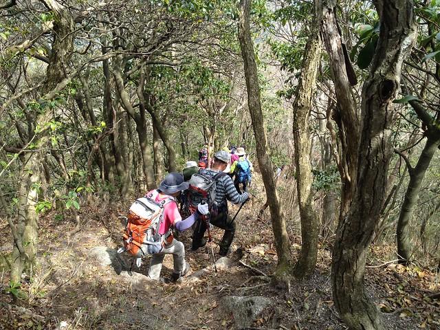 三池岳 尾根コース 登山道