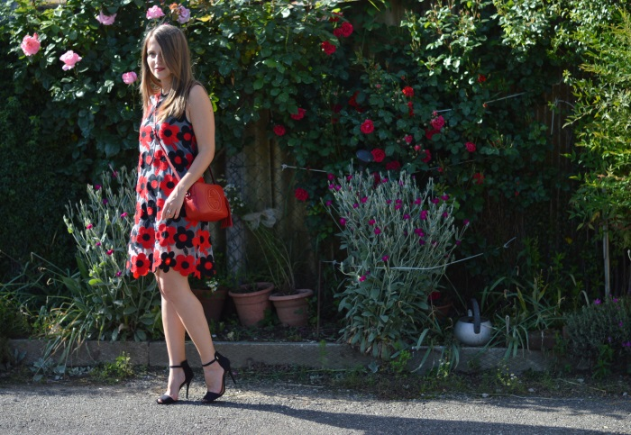 red and black, fiori, flowers, gucci, wildflower girl (4)