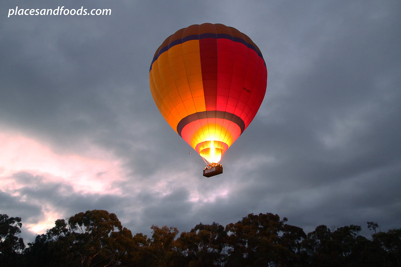 yarra valley hot air balloon flying up