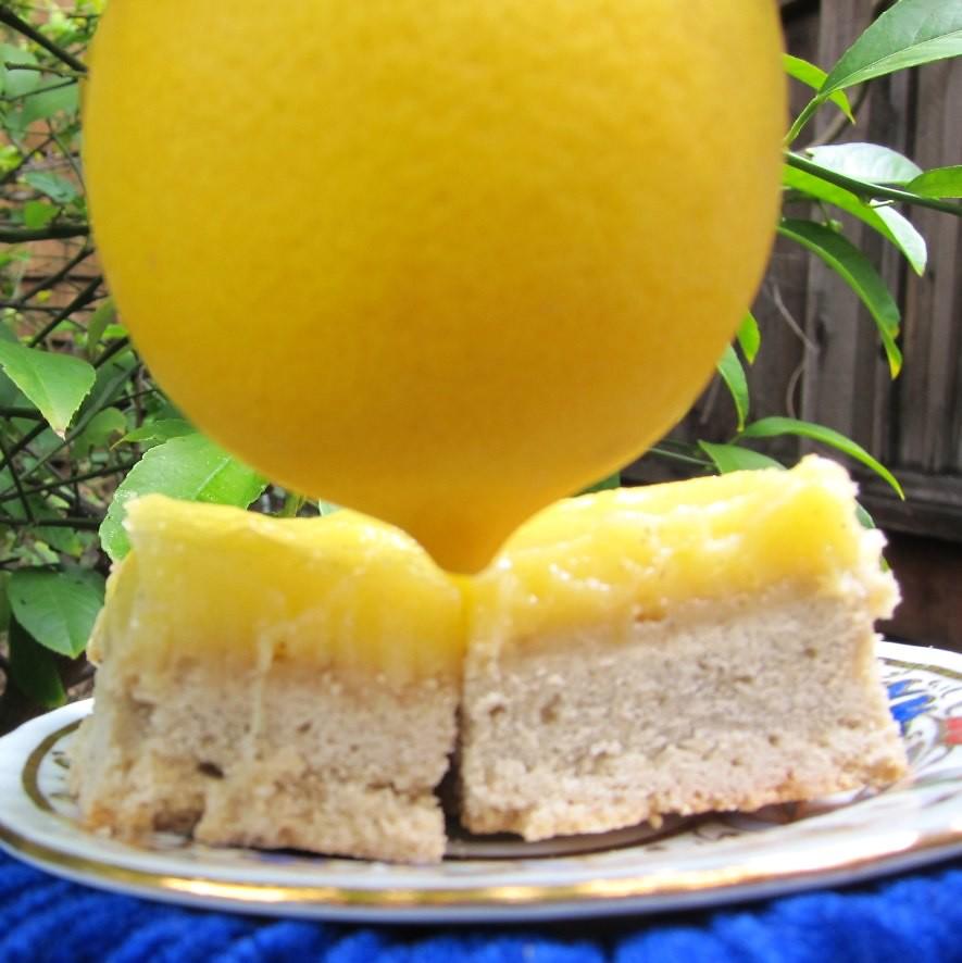 iranian meyer lemon quads