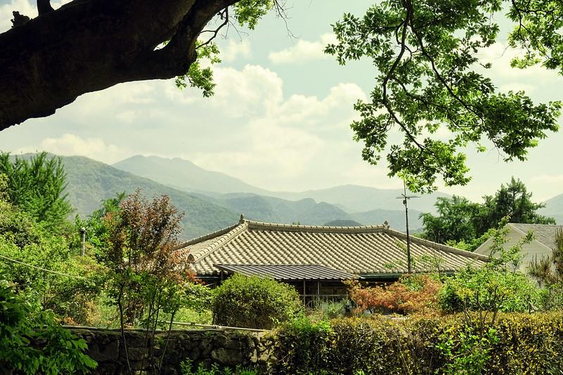 Damyang1