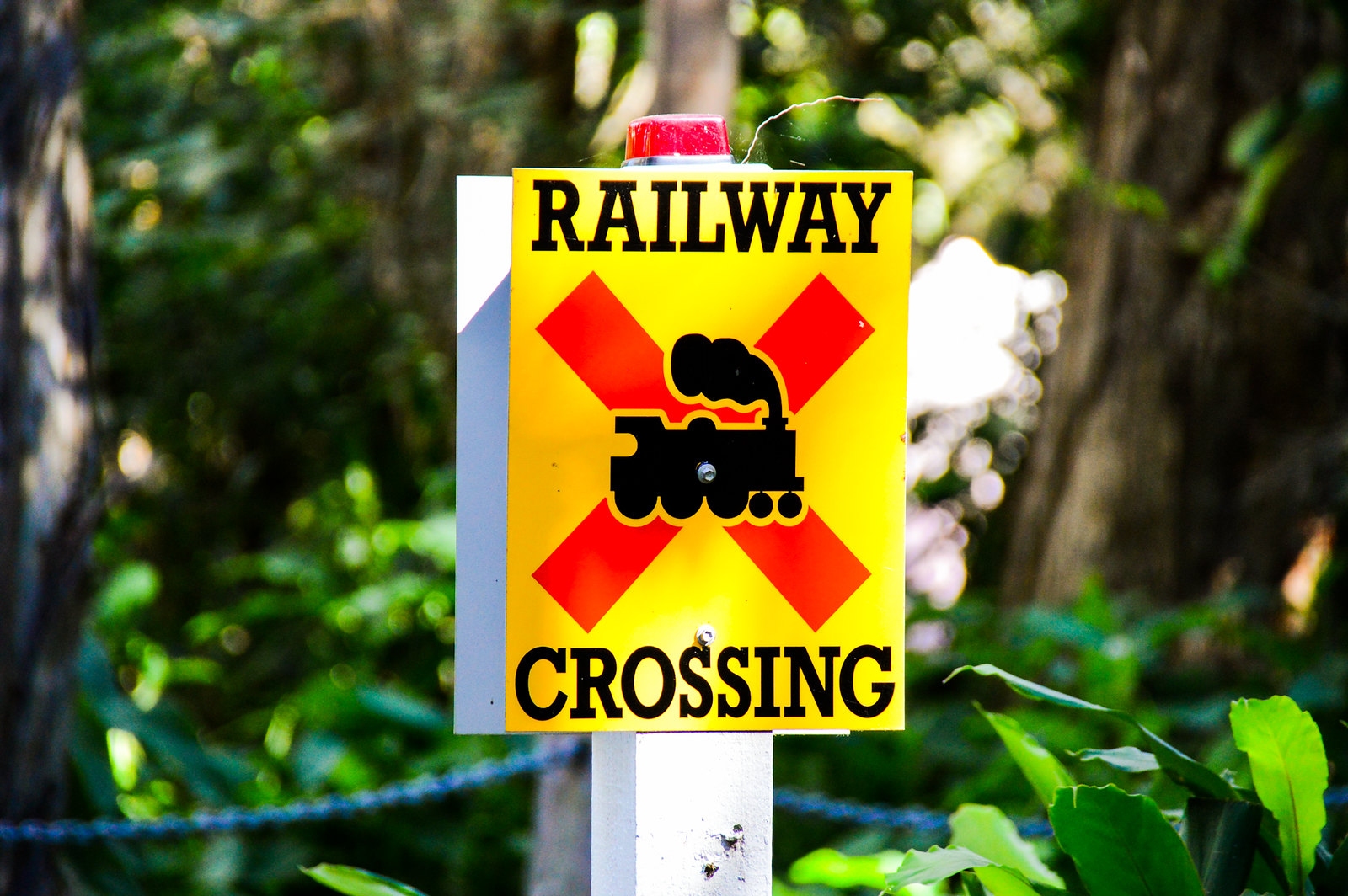 Currumbin Wildlife Sanctuary Rail Crossing
