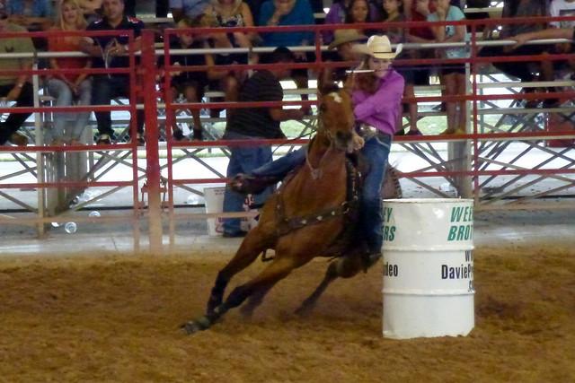 Davie Pro Rodeo, Florida