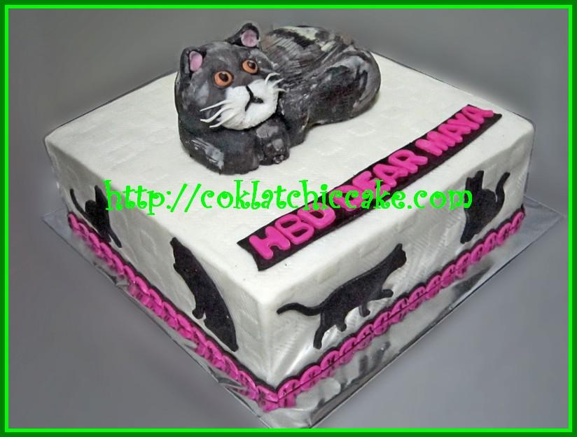 Cake Kucing Maya Coklatchic Cake