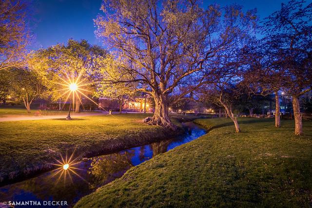 Congress Park at Night
