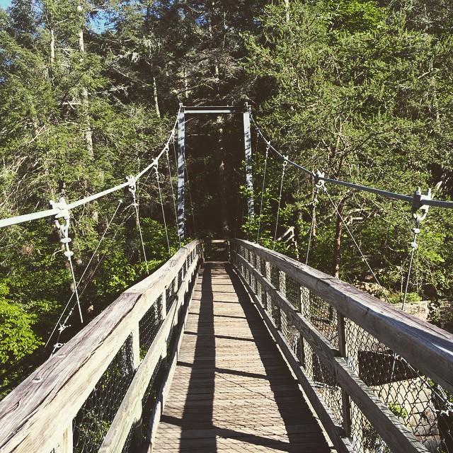 The crazy #bridge! #hiking #igersga #igersgeorgia #georgia #discovergeorgia #exploregeorgia #nature #tallulahfalls #tallulahgorge #tallulahgorgestatepark #stateparks #northgeorgia