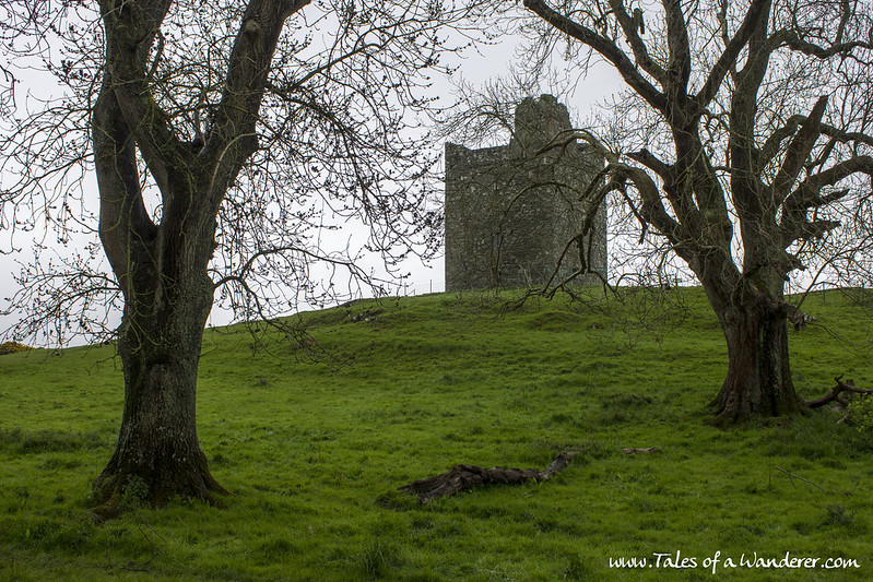 DOWNPATRICK - Audley's Field