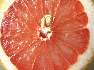 019 Turkish grapefruit