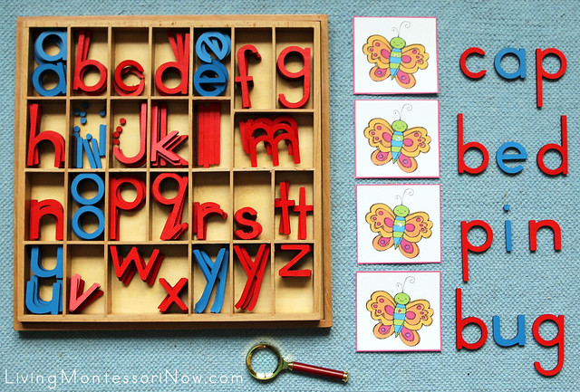Butterfly Inspectors - CVC Pictures Movable Alphabet Spelling