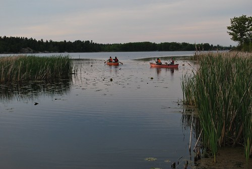 Canoeing at dusk