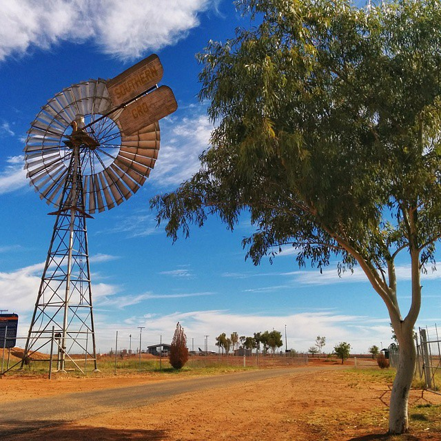 In the vast Australian Outback, windmills are still essential to supplying water to properties and thirsty livestock.