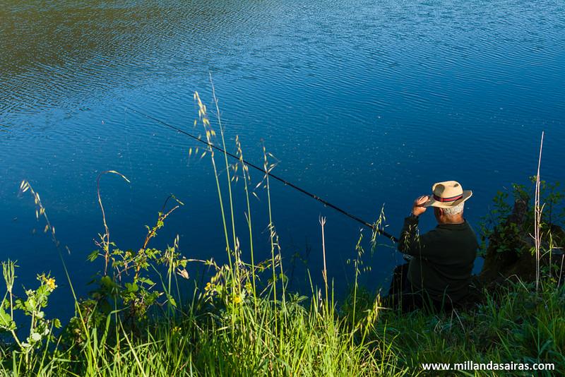 Tranquila tarde de pesca