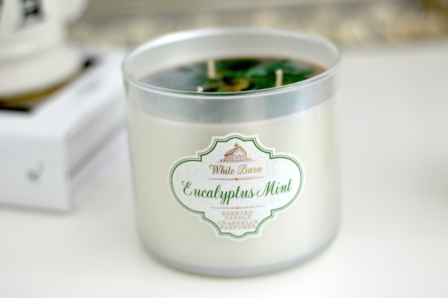 Eucalyptus Mint Bath and Body Works