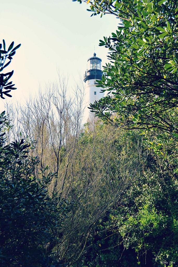 Biarritz - France (6)