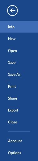 word 2013 file
