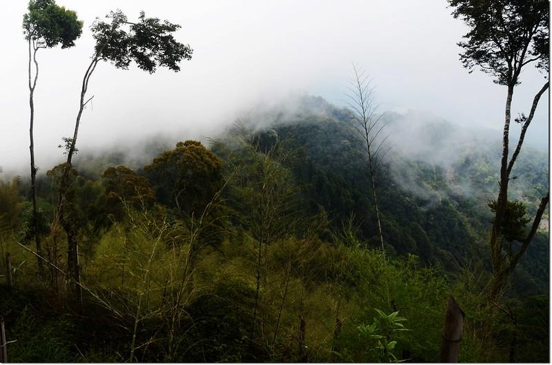 鳳凰山稜線 3