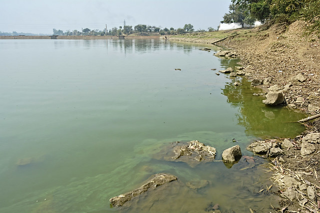 Thousands of villagers have stopped using river water for bathing due to increasing health problems related to water borne diseases. Also, there is a stench in the water, according to Bisau and Shatrughan, fishermen of Rasmada village in Durg.  In the last decade, the water quality of the Shivnath river has deteriorated. People are now more dependent on groundwater.
