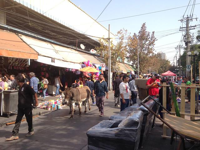 Bio Bio La Persa Market, Chile