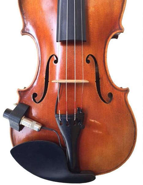 violin siracusa fishman