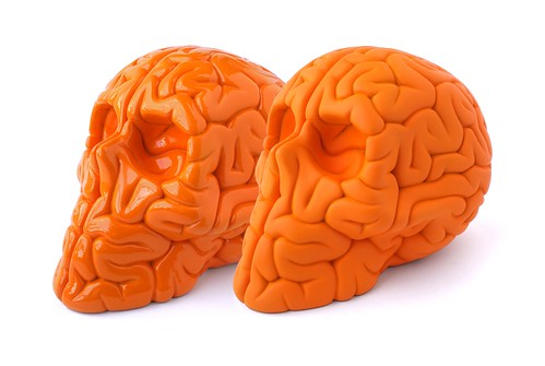ORANGE SKULL BRAINS