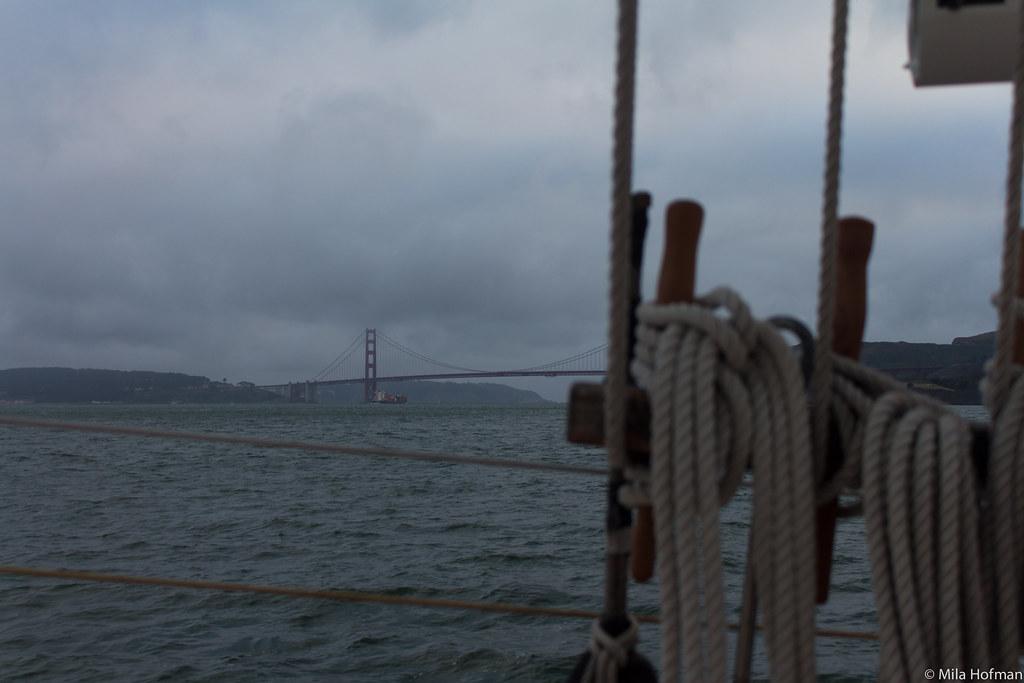 San Francisco Bay from Freda B