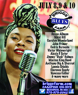 DCBS Gives Away Briggs Farm Blues Festival Tickets 2016