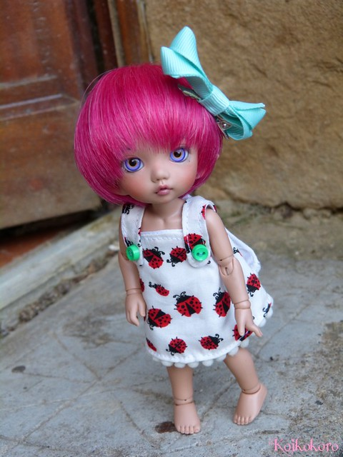 Couture et tricotages : monstre, flamant rose et alpaga 17531358338_8d1732ae9b_z