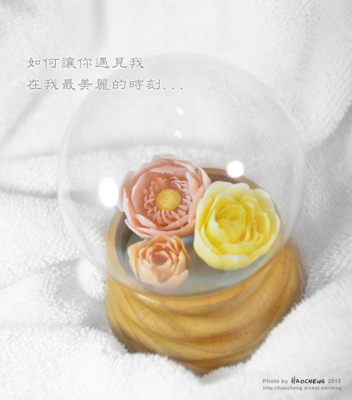 2015-0520-皂花s