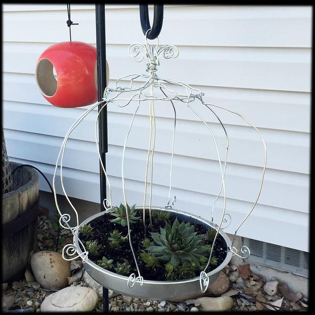 DIY Wire Birdcage Planter