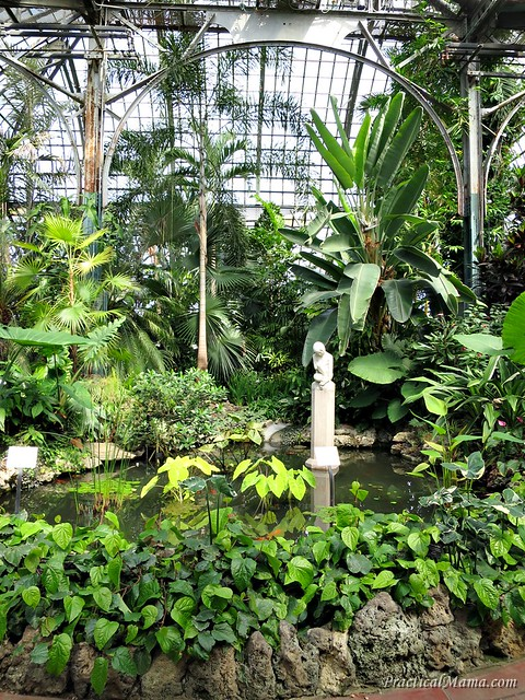 LincolnParkConservatory02