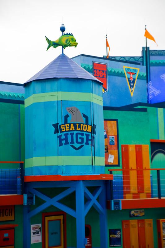 Sea Lion High-20.jpg