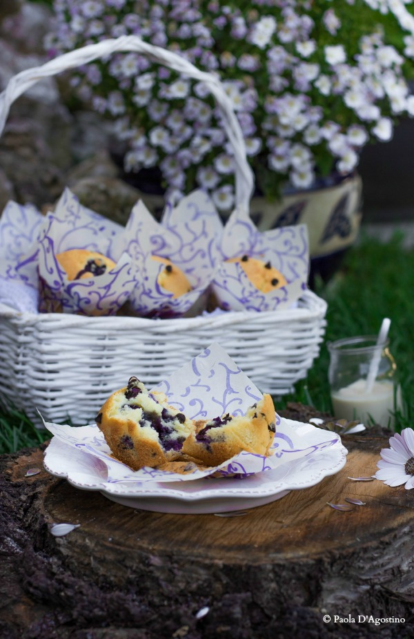 PaolaD_Muffin ricotta e mirtilli2