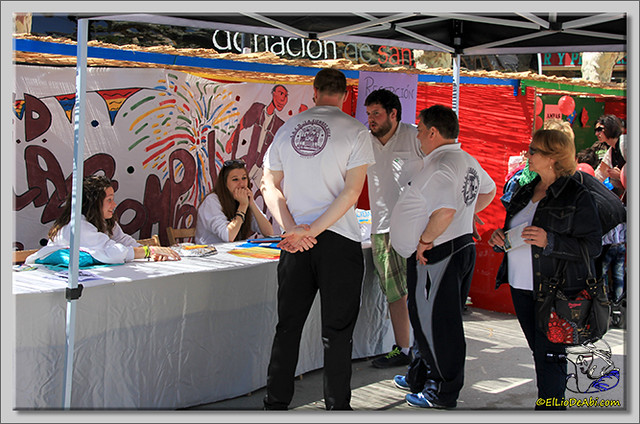 Feria de Asociaciones en Briviesca (13)