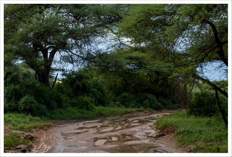 Tanzania-49