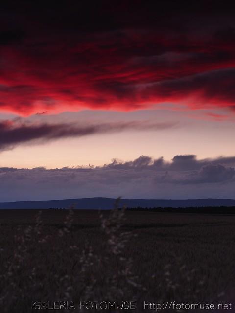Red Sky, 2