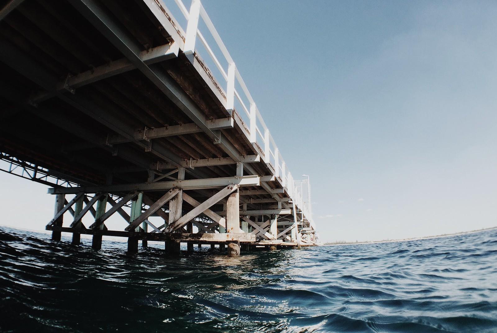 Busselton jetty snorkel