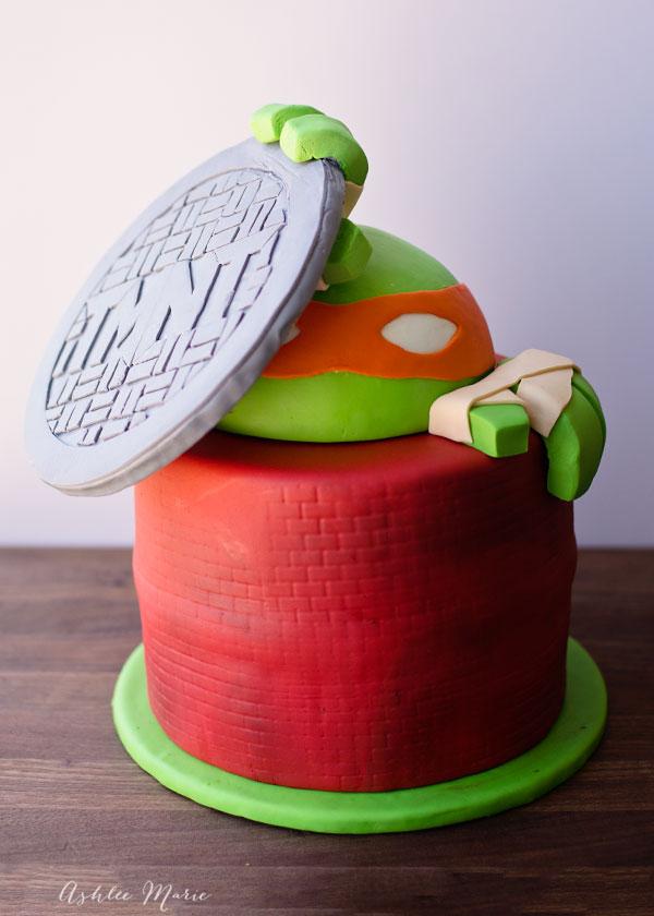 Teenage Mutant Ninja Turtles Cake Ashlee Marie Real Fun With