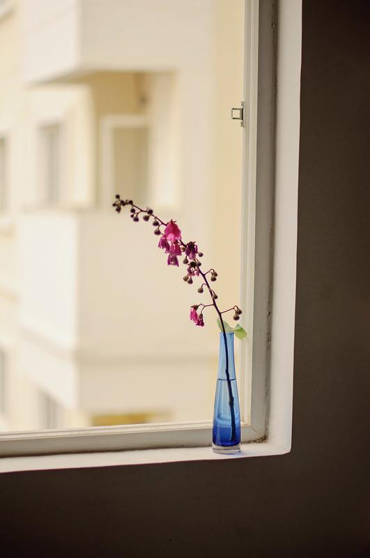 Day 112.365 - Blue Vase