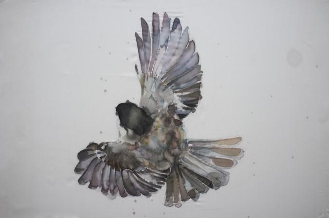 GH Birds 4