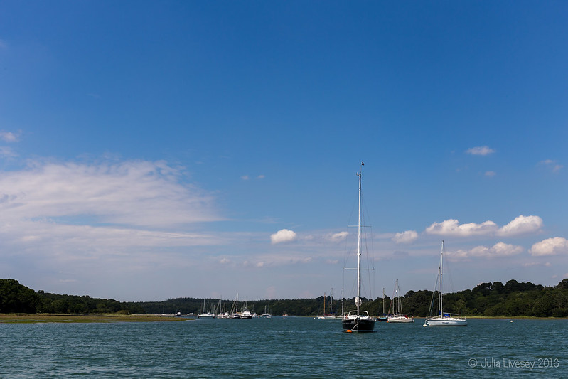 View up the Beaulieu River from our boat cruise