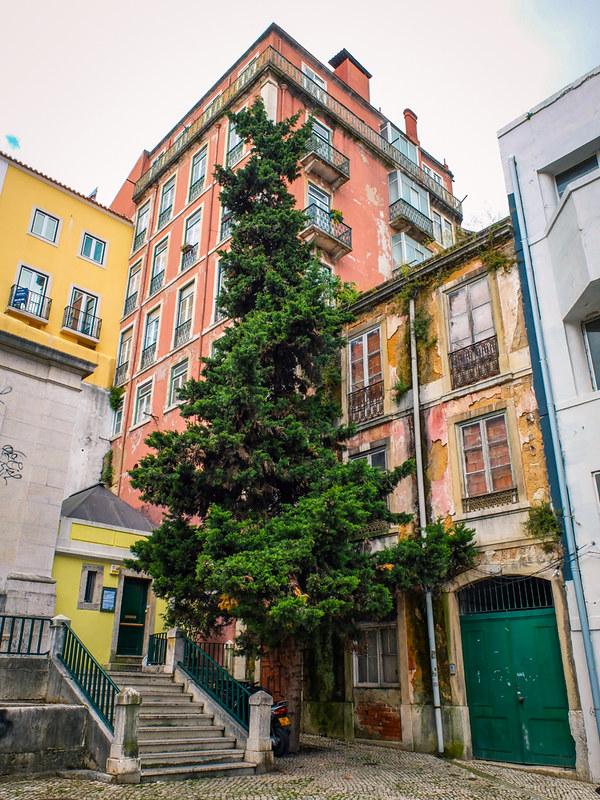 Rua da Mãe de Água, Lisboa