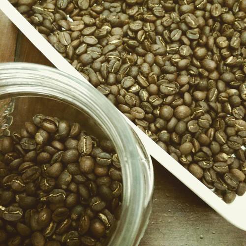 20150527 花神  #老戴咖啡豆