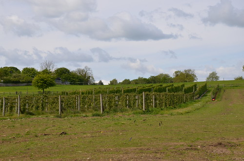 Brocksbushes Farm Northumberland May 15 2