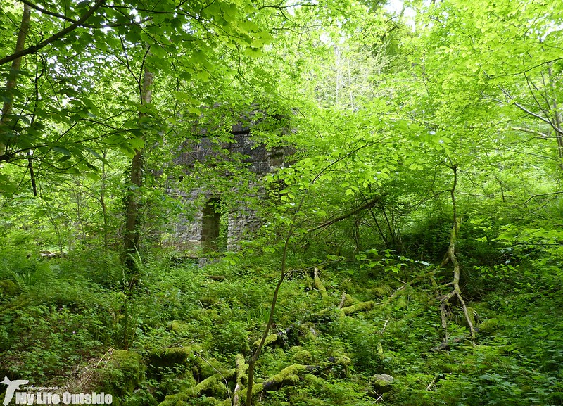 P1120919 - Mandale Mine, Lathkill Dale