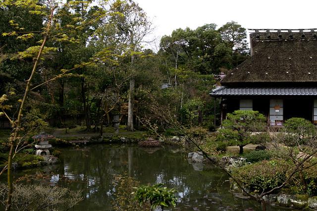 Japanese‐style garden